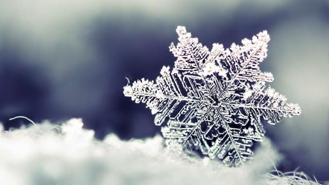 macro-snowflake